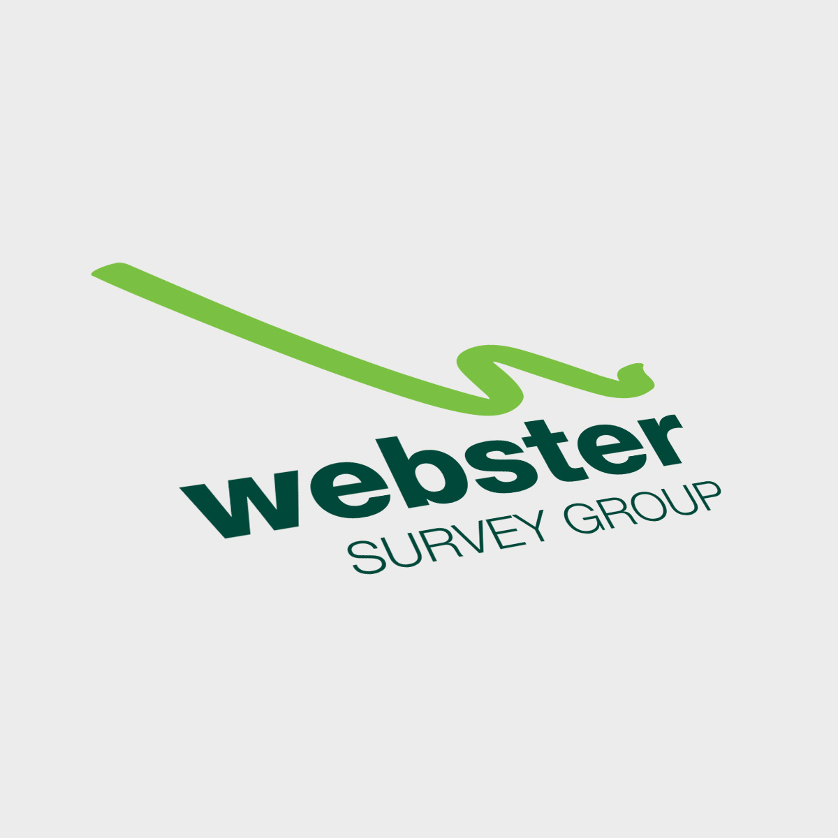 Webster Survey Group